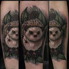 Painterly style colored hedgehog tattoo.