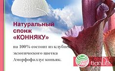 """Презентации Your """"gadget"""" to cleanse the face! On a 100% natural product made from the konjac plant. It cleanses the skin without the use of special tools, improves microcirculation."""