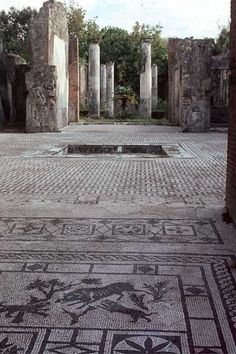 Pompeii 'House of the Wild Boar' Casa del Cinghiale - detail mosaic floor (before 79AD):