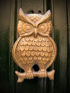 Door Knocker (Owl Type), Malta | Flickr - Photo Sharing!