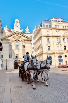 Travel Guide: 48 Ways to Spend 48 Hours in Vienna, Austria