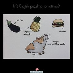 The trick in English is to call something by what it's not. #englishisweird #english #language #learnsomemore   www.mytranslation.com