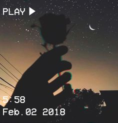 M O O N V E I N S 1 0 1 #vhs #aesthetic #rose #sky #stars #moon #brown #hand