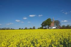 Architecture Design, Buy Home Yellow Flower Exterior Blue Sky And Idea: Buy Home Inspiration : Lymm Water Tower by Ellis Williams Architects...