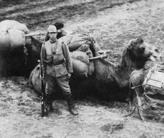 Japanese soldier with his camel in Manchuria.