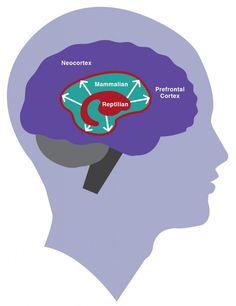 Hijack! How Your Brain Blocks Performance