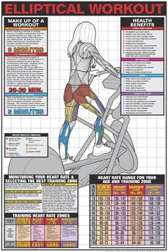 ELLIPTICAL CROSS-TRAINER WORKOUT (Women's) Wall Chart Poster -Available at www.sportsposterwarehouse.com