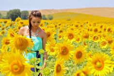 Where To Find Sunflower Fields In Tuscany » Just Wanderlust Blog