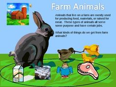 Classifying Animals lesson:  Zoo, Farm or Pet