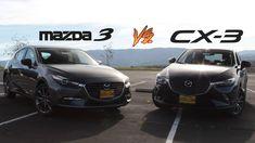 2018 Mazda3 Hatchback VS.  2018 Mazda CX-3 | DGDG.COM Mazda Cx3, New Car Smell, Oak Tree, New And Used Cars, Asian, Japanese, Japanese Language, Asian Cat
