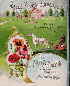 The Frank S. Platt Co. : 1904 , back cover