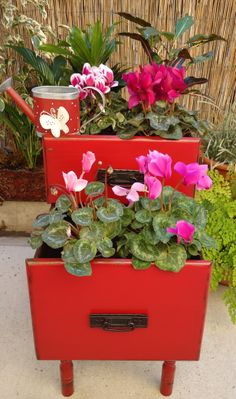 Two Old Drawers Planter - Available $125.00