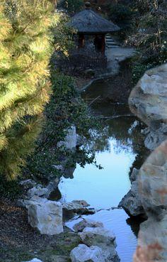 water Looking Up, Challenges, Water, Outdoor, Gripe Water, Outdoors, Outdoor Games, The Great Outdoors