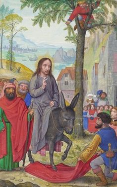 The Entry into Jerusalem, Simon Bening, about a man in a palm tree clutches a palm branch, symbol of victory. Medieval Art, Renaissance Art, Kings Of Israel, Bible Illustrations, Life Of Christ, Bible Pictures, Jesus Is Coming, Biblical Art, Lord Is My Shepherd