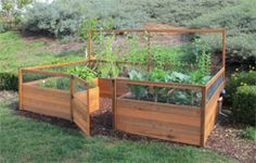 "Closed-off Veggie garden with tall raised beds from ""Gardens To Gro"""