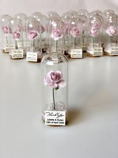 Wedding favors for guests Wedding favors Favors Dome Beauty and the Beast Favor Custom favors Beauty and the Beast Party favors beauty and the beast party Baptism Decorations, Wedding Decorations, Wedding Ideas, Fake Flowers, Colorful Flowers, Beauty And The Beast Party, Invitation, Wedding Favors For Guests, Perfume