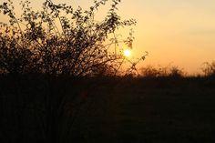 Autumn, Celestial, Sunset, Outdoor, Outdoors, Fall Season, Fall, Sunsets, Outdoor Games