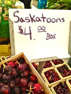 saskatoons (?!) at a #Chicago #farmersmarket ~ #food #nutrition #berries #travel