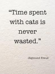 First of all, Freud didn't say that. And even if he did, it's hilariously uninspired.