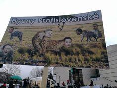VIDEO Koaličné rošády Slováci prekukli! Účasť trhala rekordy, ľudia žiadajú predčasné voľby – galéria | Topky.sk - Bleskovky Cover, Books, Libros, Book, Book Illustrations, Libri