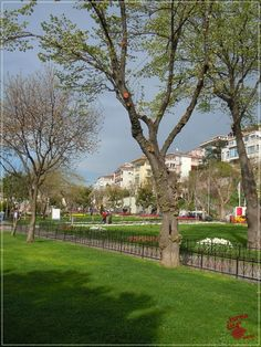 Primăvară în Istanbul | Turca La Un Ceai Istanbul, Sidewalk, Sidewalks, Pavement, Walkways