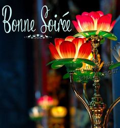 Bonne soirée image #5417 - Bonne Soirée Tags: Fleurs, Lampe. Partager cette photo sur Facebook, Twitter et WhatsApp.