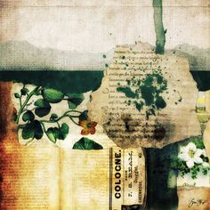 Mixed media collage by Gina Startup