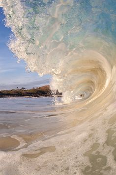 Surf's up! Nice wave photo.
