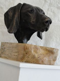 #Bronze #sculpture by #sculptor Joseph Hayton titled: 'Weimaraner Portrait (Bronze Dogs Head Commission statue)'. #JosephHayton
