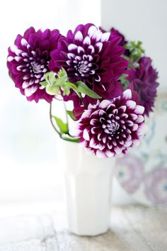 Dahlias are my mum's favourite, so they'll be in any garden of mine that will grow 'em.