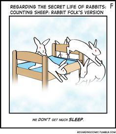 "They are really noisy ""sheep"". Bunny Meme, Funny Bunnies, Cute Bunny, Animals And Pets, Baby Animals, Cute Animals, Secret Life Of Rabbits, Show Rabbits, Raising Rabbits"