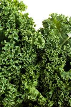 Nutritional therapist Eve Kalinik shares the best ways to introduce kale to your diet http://uk.bazaar.com/1jDP31A