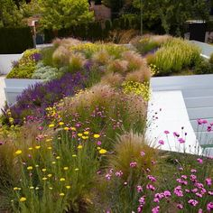 Green Roof in Madrid by Planta Paisajistas, .Green roof in Madrid by Planta Paisajistas, - # Green roof The Roof House Save Continues in Berlin Danish Sigurd L. Landscape Architecture, Landscape Design, Contemporary Garden Design, Modern Design, Rooftop Garden, Garden Cottage, Concrete Planters, Landscaping Plants, Landscaping Ideas