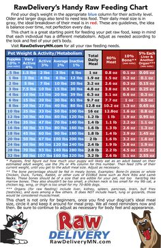 Raw Feeding Chart find your dog or cats weight and activity level, then you will find how the amount of food to feed. This amount is a starting point, it will need to be adjusted for each pet and over time as their activity and metabolism changes.