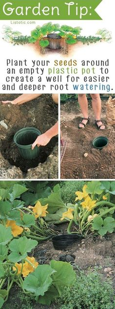 DIY Garden Idea for vegetables, plants or flowers.
