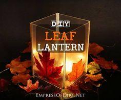 DIY-Leaf-Lantern-H1