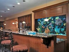 Another cool fish tank display behind a home bar.