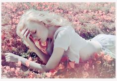 field of flowers / by caitlin bellah