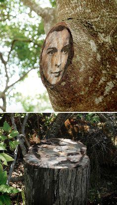 sally lundburg - intervention on hawaiian trees