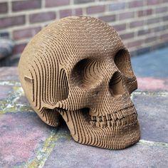 Build-It-Yourself Laser-Cut Cardboard Human Skulls