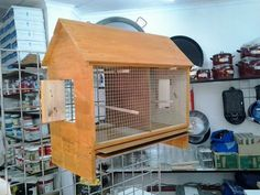 jaula periquitos y canarios