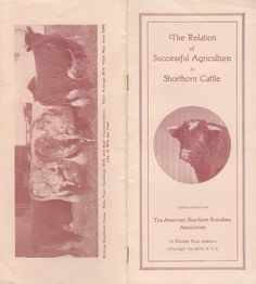 Relation of Successful Agriculture to Shorthorn Cattle Vintage 1920s Booklet