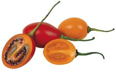 nuts about fruit: Tamarillo: Exotic Tree Tomato