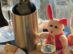The Adventures of 'Pink Flor': The Adventures of 'Pink Flor' Flor wanted Champagne...