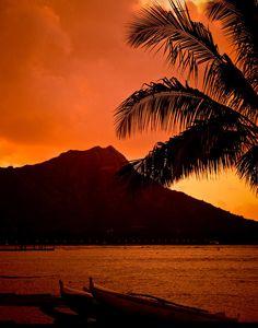 ✯ Sunrise at Diamond Head - Hawaii             Good morning all Diamond Head Hawaii, Beautiful Sunset, Beautiful Places, Van Gogh Landscapes, Pics Art, Dream Vacations, Places To See, Adventure Travel, Sunrise