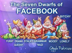 The Seven Dwarfs of Facebook.  from Giggle Palooza. https://www.facebook.com/photo.php?fbid=424267054324866=pb.174252539326320.-2207520000.1361384486=3http://www.gigglepalooza.net