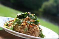 Chicken Satay Noodle Salad Delicious and as it uses Shirataki noodles (made from tofu), no carbs or calories from those noodles! Spinach Noodles, Shirataki Noodles, Wine Recipes, Asian Recipes, Healthy Recipes, Ethnic Recipes, Healthy Chicken, Chicken Recipes, Chicken Satay