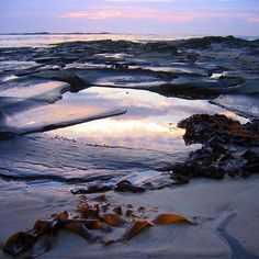 Sea kelp and reflection in rock pool. Apollo Bay Victoria. #exploingaustralia #exploreaustralia #wow_australia #explorevictoria #wow_australia #amazing_australia #apollobay #great_captures_australia #photooftheday #loves_reflections #greatoceanroad #visitmelbourne #visitgreatoceanroad #seeaustralia #nature_skyshotz #nature_brilliance #water_brilliance #sky_brilliance #ptk_nature #tv_travel by normallchin http://ift.tt/1LQi8GE