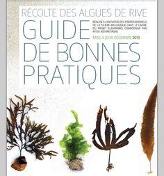 Guide de récolte d'algues