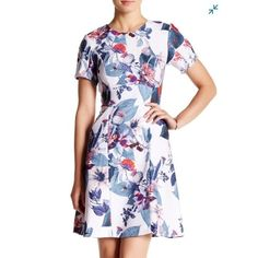 Yoana Baraschi Lotus Garden Fit And Flare Dress, 8